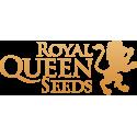 Graines cannabis féminisées Royal Queen Seeds