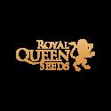 Graines cannabis automatique Royal Queen Seeds