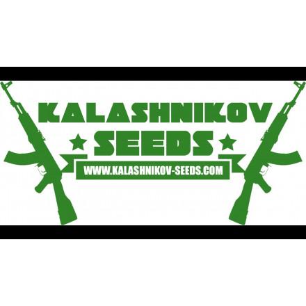 LAVANDA CREAM Kalashnikov Seeds
