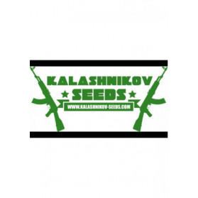 Vodka Lemon Kalashnikov Seeds