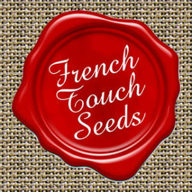NUTTEA HAZE French Touch Seeds