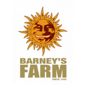 Phantom OG Barney's Farm
